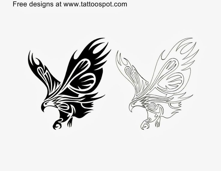 Tribal Eagle Tattoo and their meaning