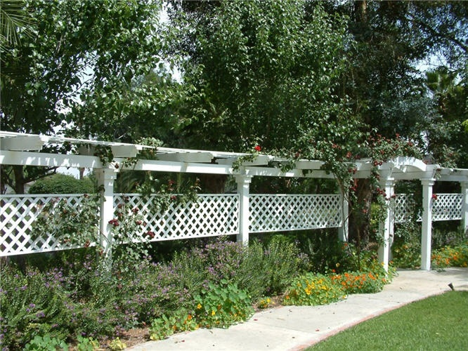 Garden Ideas Along Fence Line 138 best yard privacy fence/plant etc ideas tips images on