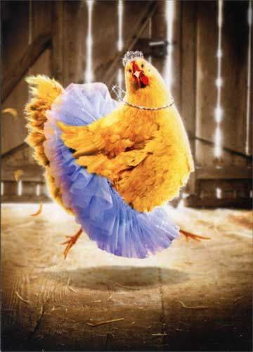 Chicken in Tutu
