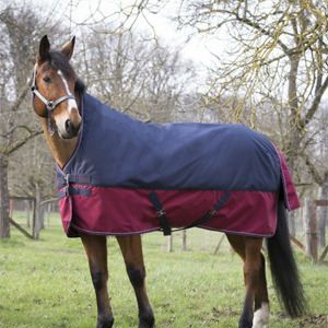 Equi-Theme Tyrex 1200D High Neck Lightweight Turnout Rug