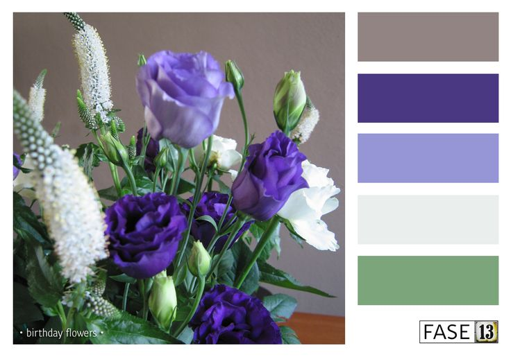 #colourinspiration by #fase13 ~ Birthday Flowers