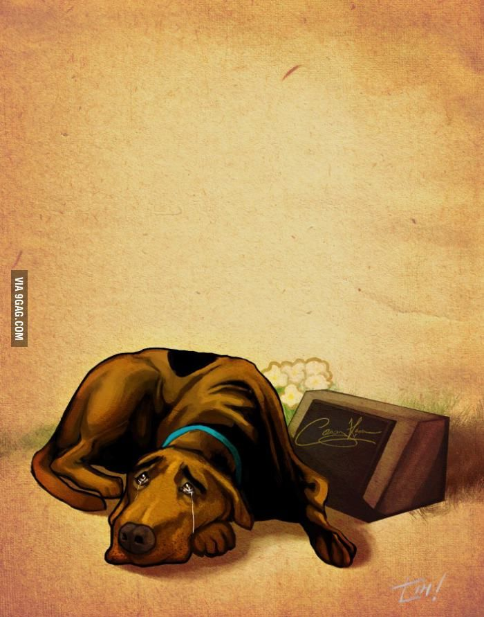 Casey Kasem, the voice of Shaggy from the Scooby Doo cartoons passed away. He has all the Scooby snacks he wants now.