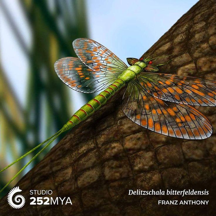 Delitzschala bitterfeldensis Artwork von Insekten waren schon lange in den Himmel gekommen – SBI