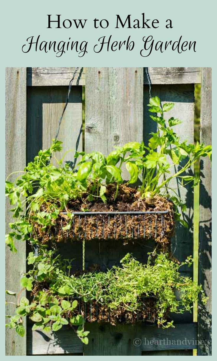 How to Make a Simple Hanging Herb Garden
