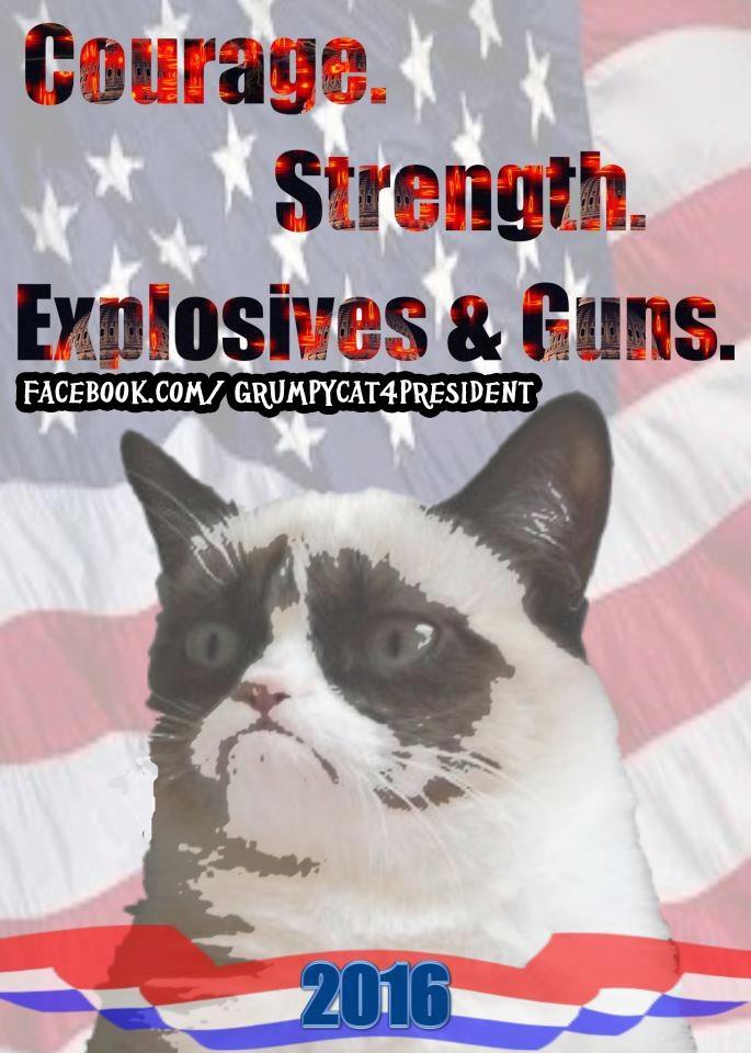 Grumpy Cat President