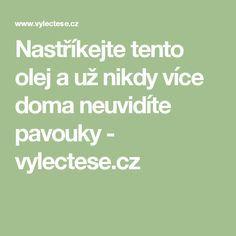 Nastříkejte tento olej a už nikdy více doma neuvidíte pavouky - vylectese.cz