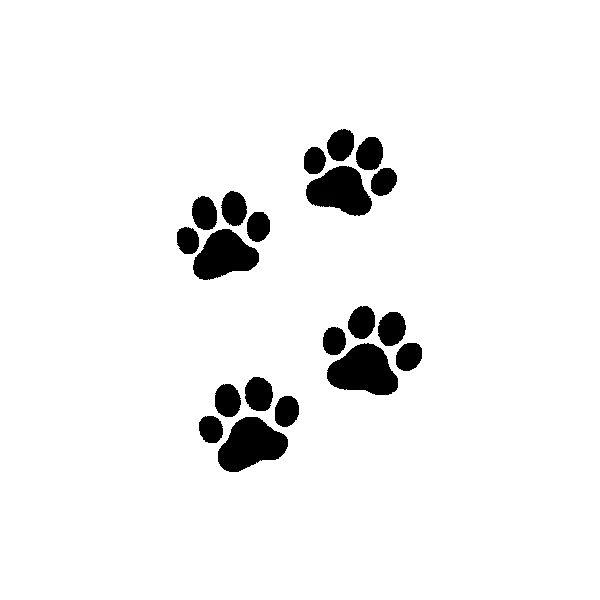 moldes de gatos | Tatuagem patas de gato molde límpavel - TATTOO DIFFUSION PORTUGAL