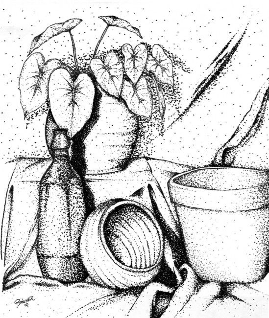 338 Best Images About Still Life On Pinterest: 37 Best Images About Coloring Pages On Pinterest