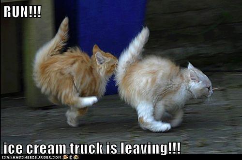 RUN!!!   http://cheezburger.com/9050492928