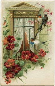 vintage postcard image, old fashioned greeting card, bird flower window graphic, antique postcard birds at window, best wishes floral postca...