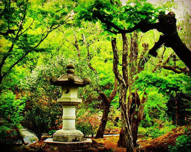 More on Tenryu-ji Temple 天龍寺 . . . . . #tenryuji #tenryujitemple #temple #arashiyama #kansai #osaka #kyoto #kyotojapan #beautifulkyoto #nara #japan #visitjapan #explorejapan #wonderfuljapan #ilovejapan #japantrip #travel #travelgram #prettylittletrips #findmeinosaka #kyototouristinfo #japanawaits #AsianWanderlust #wanderlust #wanderlusttt #modernatlas #tripcendo #beautifuldestinations #theworldguru #picoftheday