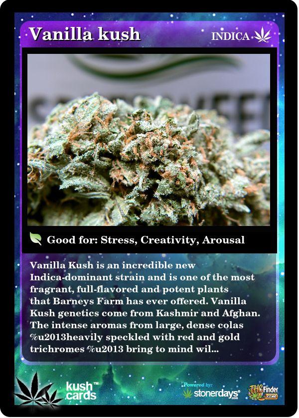 Vanilla Kush | Repined By 5280mosli.com | Organic Cannabis College | Top Shelf Marijuana | High Quality Shatter