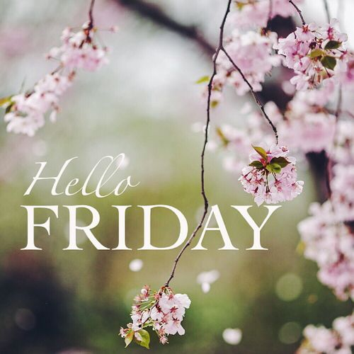 Hello Friday flowers floral friday tgif friday quotes hello friday its friday