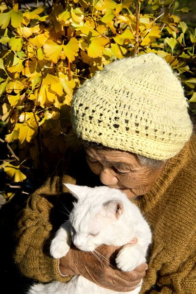 Misao and Fukumaru the Cat, Partner with Each Other. Beautiful. (Photo by Miyoko Ihara) Many elderly people in Japan have been forced to give up their pets because the temporary housing they are in doesn't allow them. March 11, 2011 created problems for so many people and animals. :(