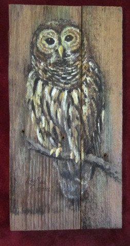 Barred Owl Original Acrylic Painting on Barnwood by bygoshbygolly, $39.99