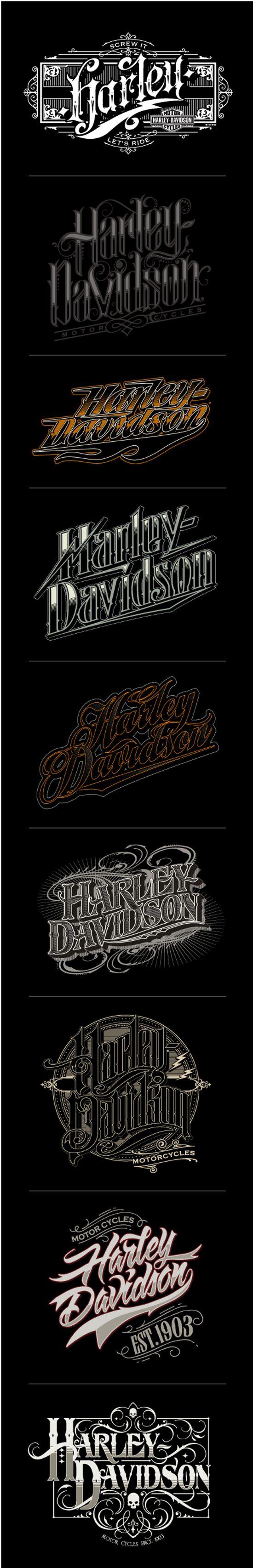 Harley Davidson custom lettering | Sweyda, Typography, type, custom lettering, hand lettering, vector, vector illustration, action sports