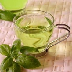 green tea as a diet supplement
