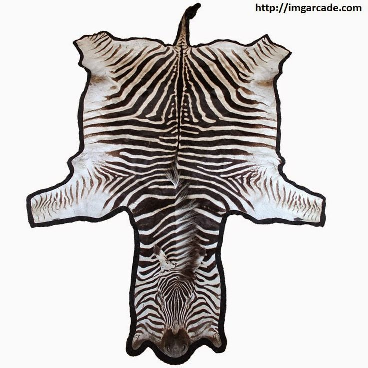 1000+ Ideas About Animal Skin Rug On Pinterest