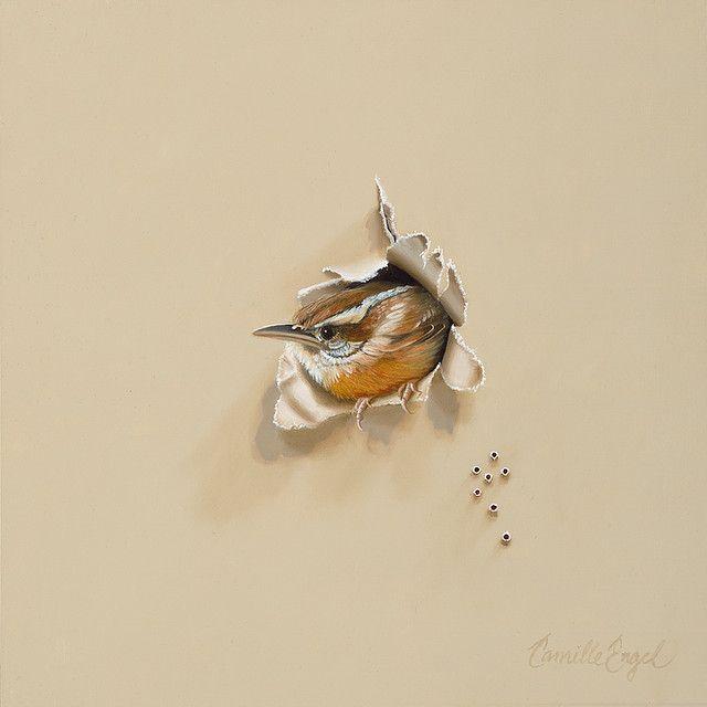 Carolina Wren Trompe-l'oeil Bird Oil Painting by Camille Engel ..