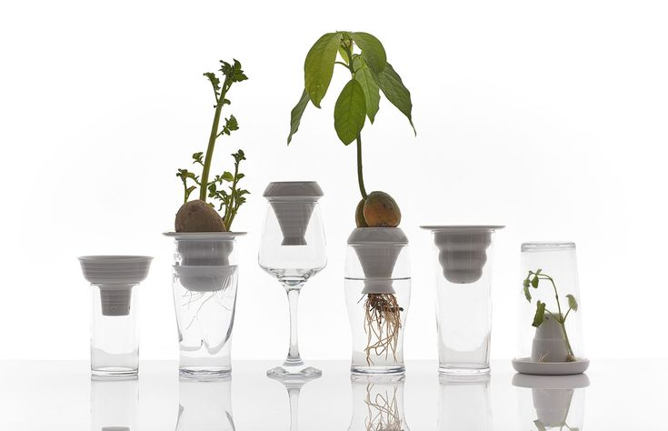 PLANTATION is a series of porcelain elements designed for growing herbs and ornamental plants using the principles of hydroponics. Thanks to the use of only wat