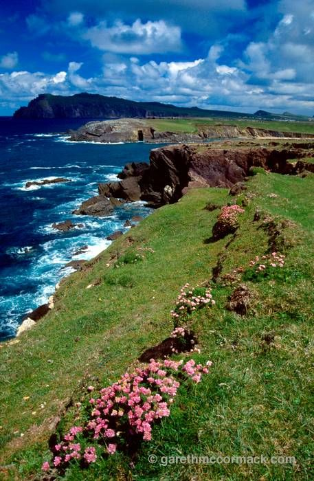 Dingle Peninsula, Co Kerry, Ireland.