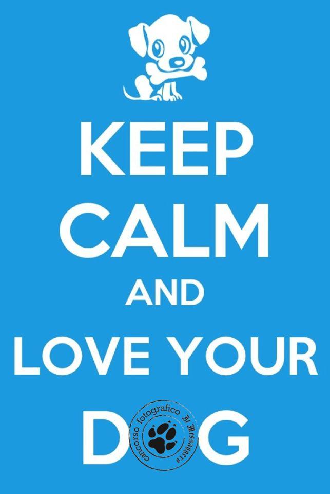 Sempre e comunque! Love.  www.cancorso.it cancorso2013, cancorso, cani, cane, concorso, concorsi, contest, ilmessaggero, quotidiano, animali, storie, canstorie, coppie, cancoppie, citazioni, aforismi, curiosità