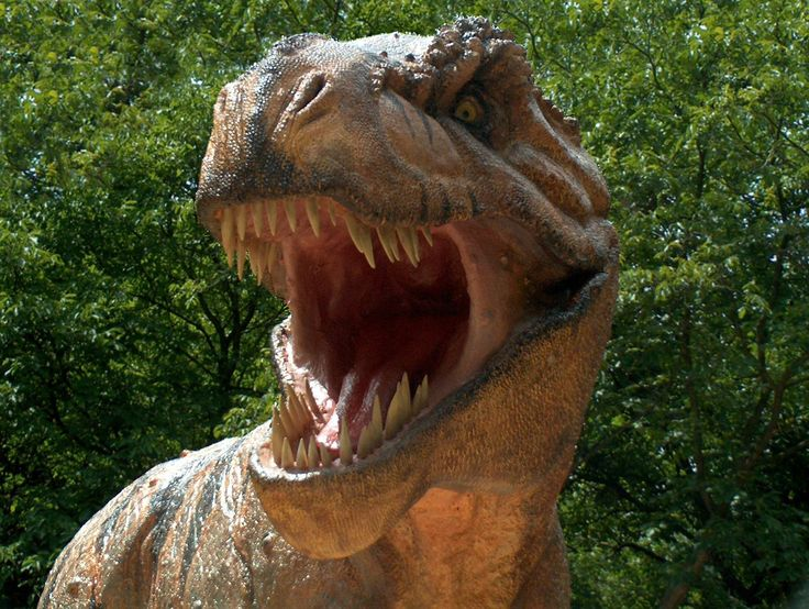 JURASSIC PARK: Tiranossauro Rex