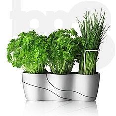 Menu Trio herb garden- would look awesome in window instead of window box- modern and love it!