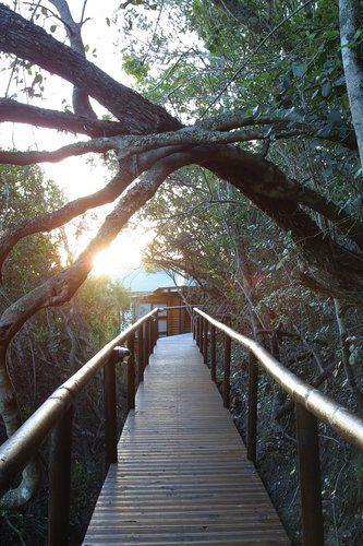Boardwalk Lodge, Wilderniss: http://www.lekkeslaap.co.za/akkommodasie/boardwalk-lodge
