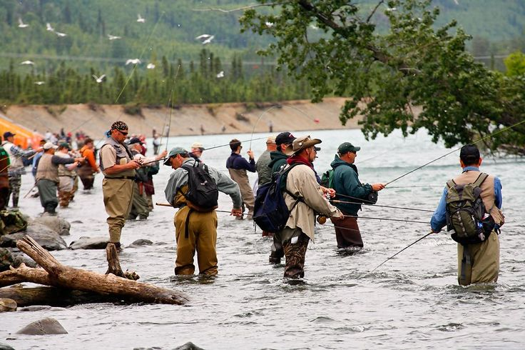 235 best juneau alaska fishing images on pinterest for Juneau fishing charters