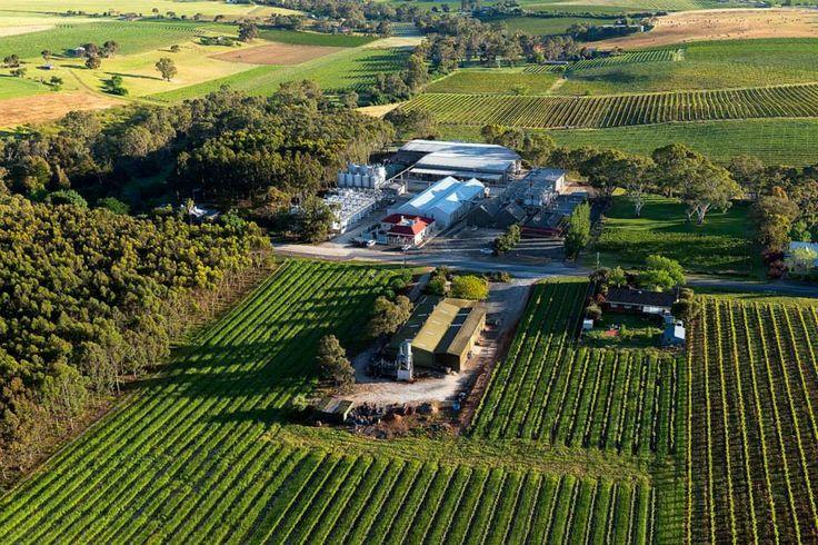 #Barossa Valley #wine region in South #Australia