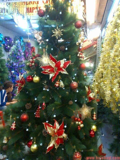 Pohon Natal Murah Pistil Polos