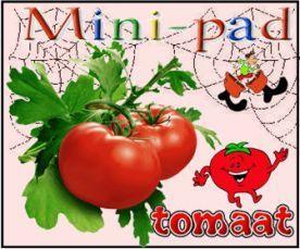 Een tomaat, een pleister, en een verbandtrommel  Gekke verhaaltjes voor het slapengaan