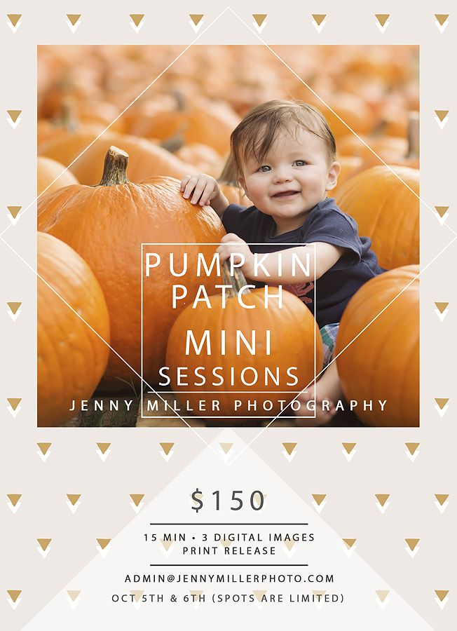www.jennymillerphoto.com; pumpkin patch mini session san antonio; San Antonio Child Photographer. Jenny Miller is a San Antonio newborn photographer also specializing in families and babies in San Antonio, Texas and the surrounding areas.