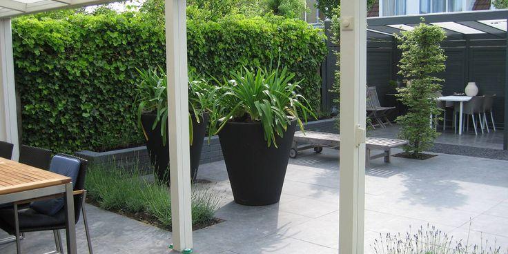 Deze moderne achtertuin is ontworpen en aangelegd door Wijsman Hoveniers.