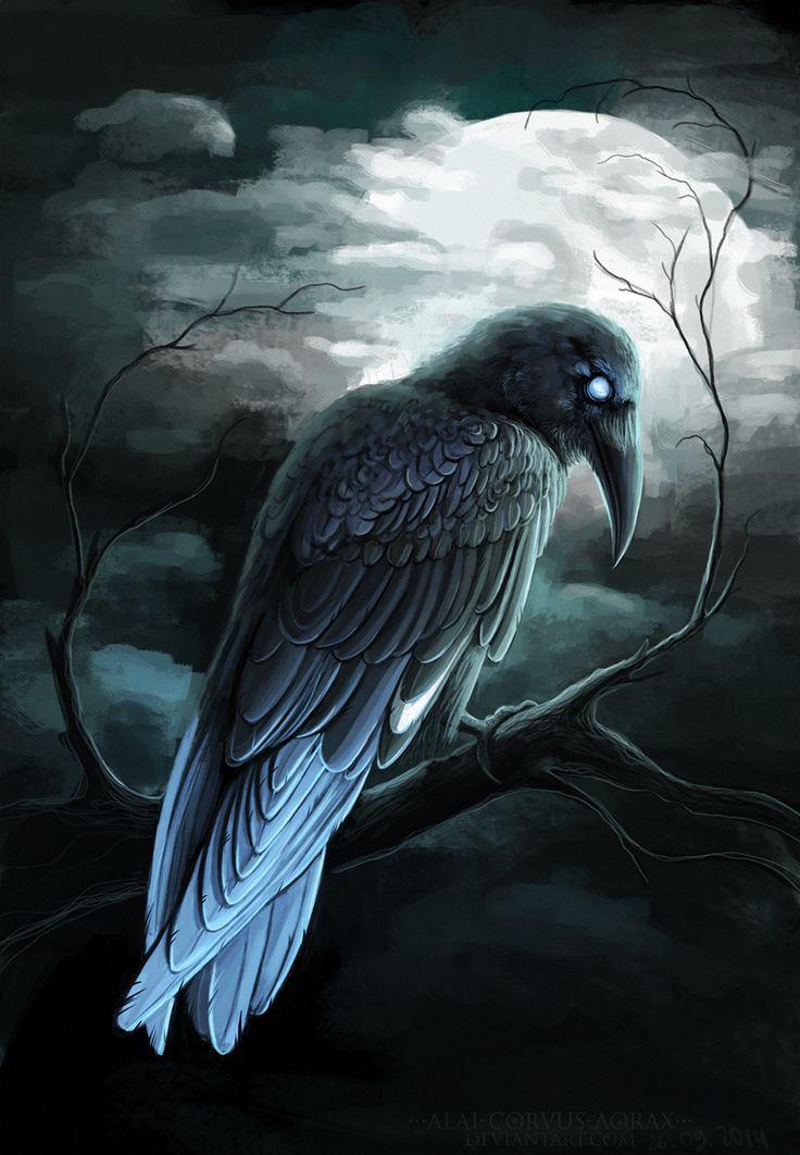 Blue-tailed raven by Alaiaorax.deviantart.com on @DeviantArt
