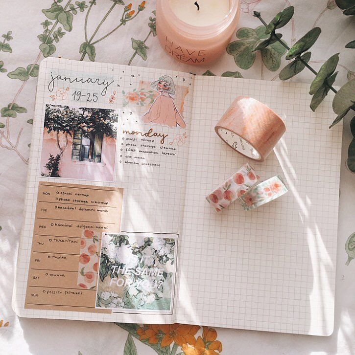 """Gefällt 289 Mal, 10 Kommentare - ❅ Cold Bujo ❅ (@coldbujo) auf Instagram: """"peachy spread for next week ** AND YES I WROTE JANUARY INSTEAD OF FEBRUARY I HAVE NO IDEA WHY,…"""""""