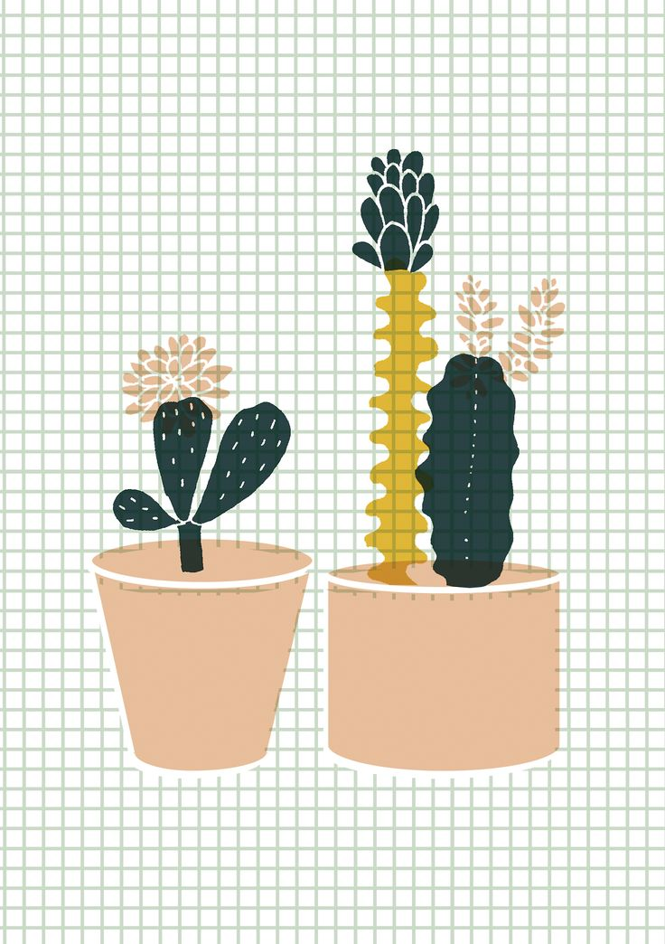 I really like the grid/graph paper used as a background in this images. It works parallel to the use of geometric cut outs used for the main illustration of the cactus. Minimalism is key to this design