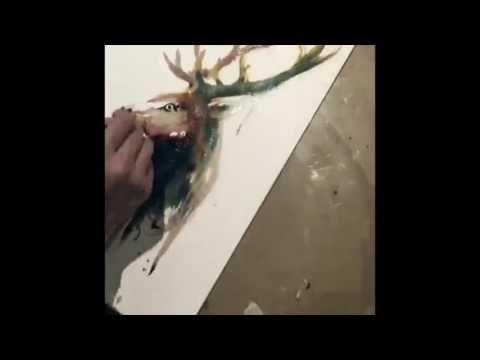 Video Hirsch