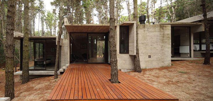 Бетонный дом в лесу Буэнос Айреса, Аргентина