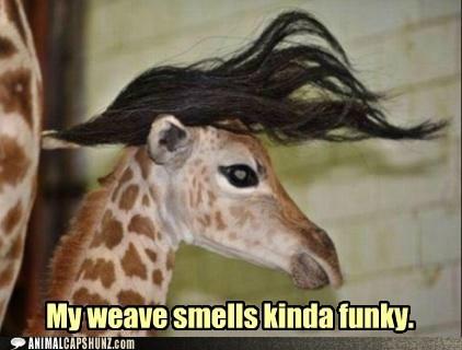Mah weave! @Lauren Parzianello