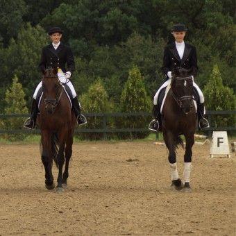 Plimbare in padure cu calul - Snagov