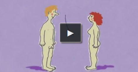 Wie Kinder entstehen zeigt Euch dieser tolle Film vom KiKa. Aufklärung leicht gemacht. Wurde auch in der Sendung mit der Maus gesendet. Toll und lustig