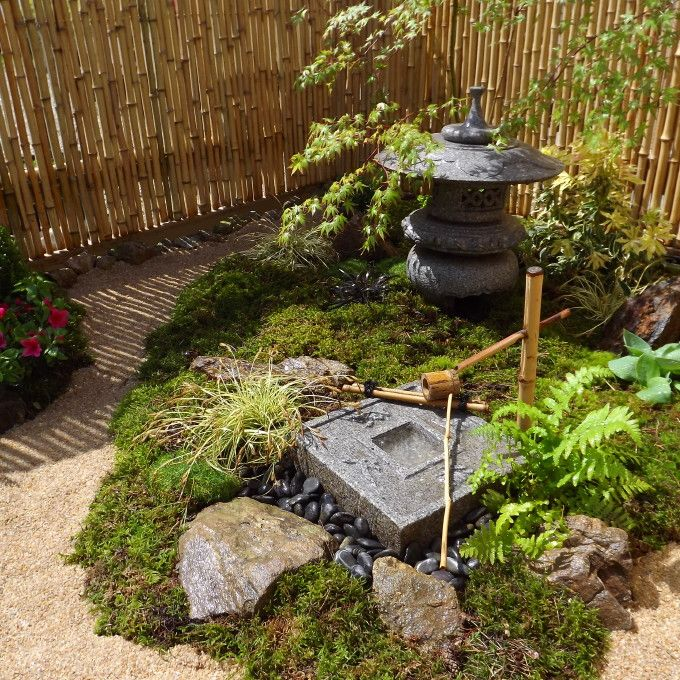 Taille japonaise niwaki hortitherapie frederique dumas for Creation jardin zen