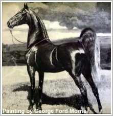 A painting of the Saddlebred Bourbon King by George Ford Morris.