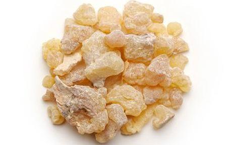 Frankincense:  Frankincense oil 'could be alternative treatment for bladder cancer'