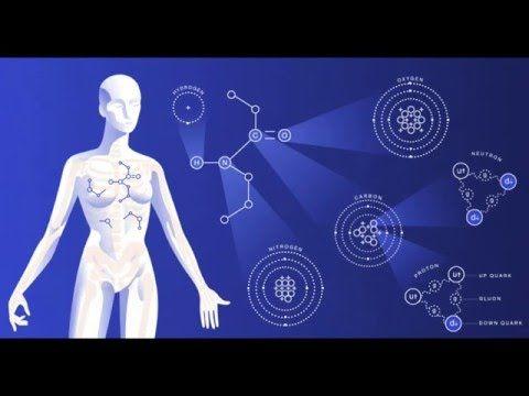 Fisiología del Ejercicio: Respuestas cardiovasculares ante el ejercicio físico - YouTube
