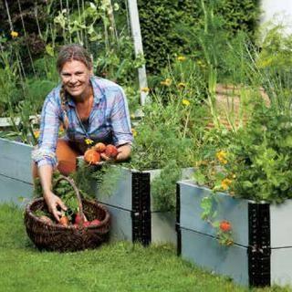 Eva Robild viser hvordan du skaper en frodig kjøkkenhage uten å behøve å ta et eneste spadetak! I tillegg til å dyrke grønnsaker kan du bruke pallekarmene til mye annet – hvorfor ikke så frø til vakre sommerblomster eller lage en herlig urtehage? Det er både enkelt og morsomt å dyrke i pallekarmer! Å skape en egen avling krever verken en hageparsell eller en stor hage – det kreves faktisk ingen hage. Ved hjelp av pallekarmer og jordsekker kan du skape et perfekt bed til og med på asfalt…