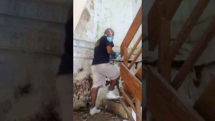 Why Do Mold Removal Inspection & Testing? Guaranteed LOWER price than the competitor! http://www.miamimoldspecialists.com/