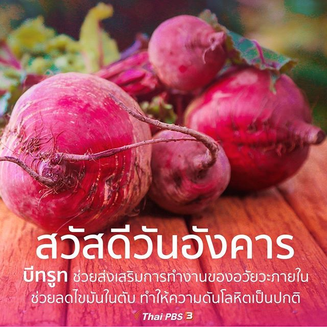 Thai Pbs ไทยพ บ เอส Thaipbs ร ปและว ด โอ Instagram สว สด สว สด ตอนเช า ว นอ งคาร